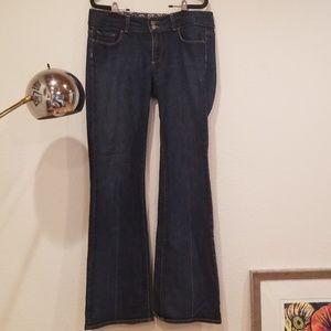 Paige Premium Denim Jeans SZ 31